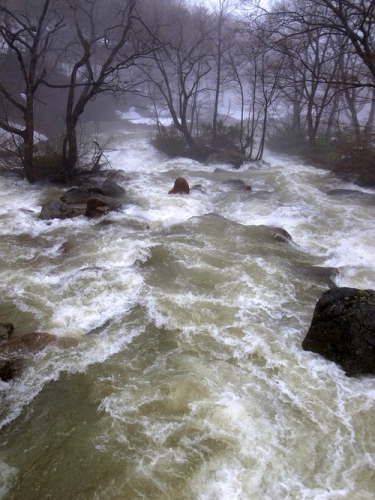 Creative Writing Exercise: Flooded Stream