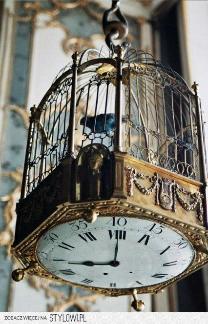 Clock bird cage