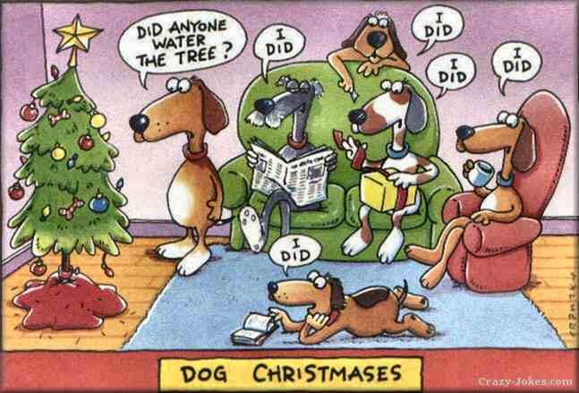 dog christmas1 Good Boy Dog Names For Pitbulls
