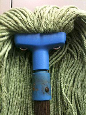 face in a mop