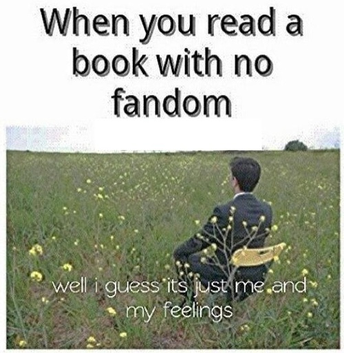 Feelings-fandom