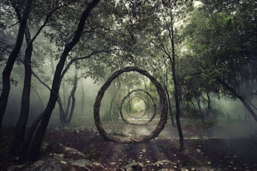 Forest Sculpture by Spencer Byles