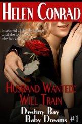 husband-wanted-will-train